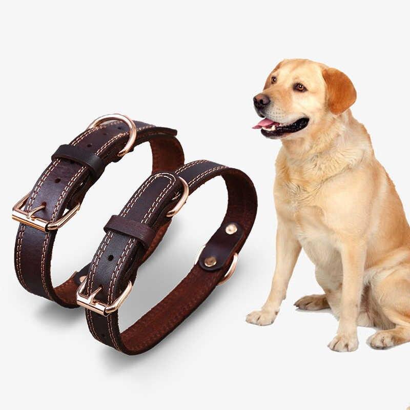 Ошейник для собаки своими руками — лучшие способы создания ошейника своими руками. поэтапная инструкция для начинающих + 130 фото идей оформления