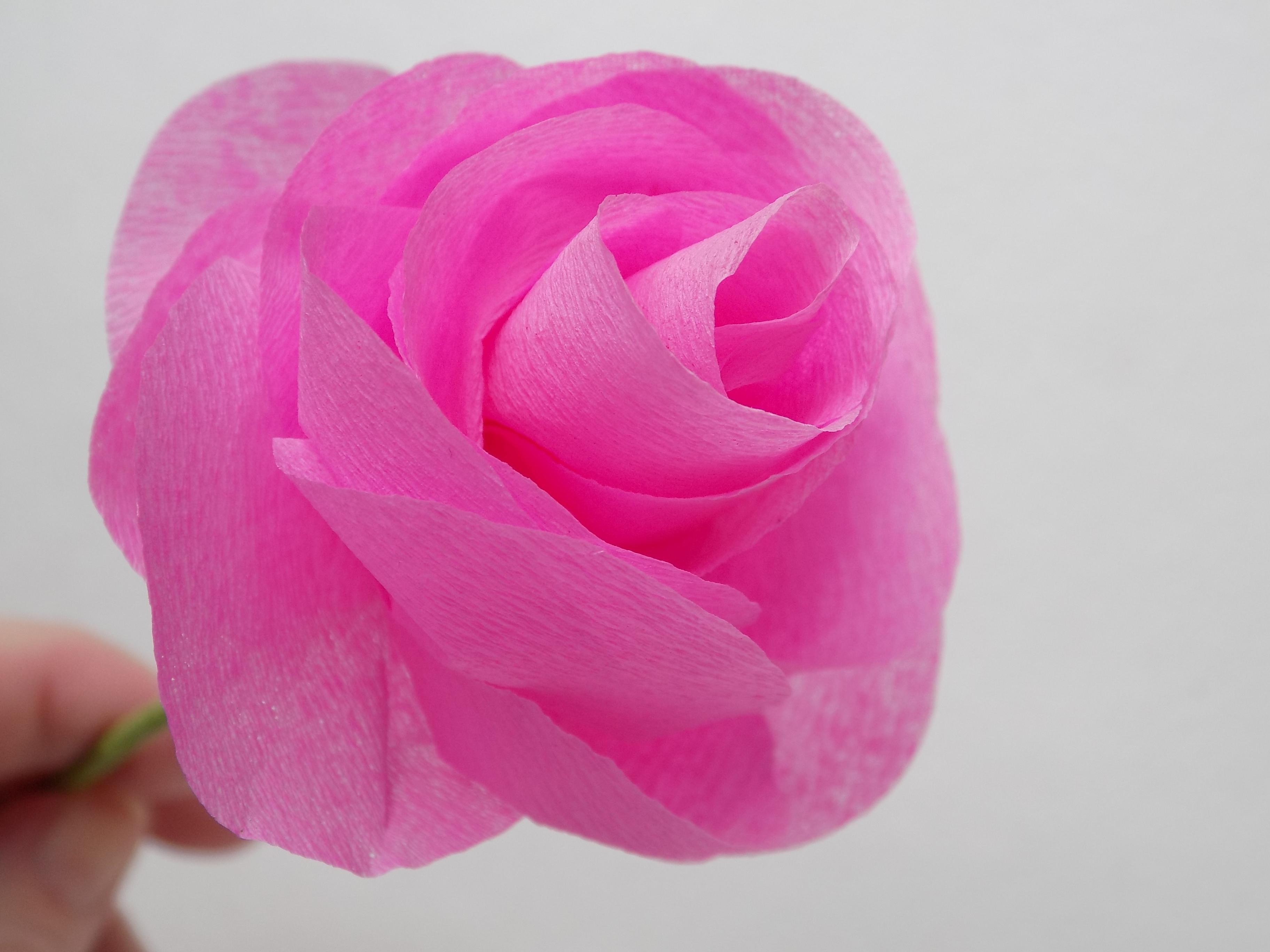 Мастер-класс по созданию роз из гофрированной бумаги