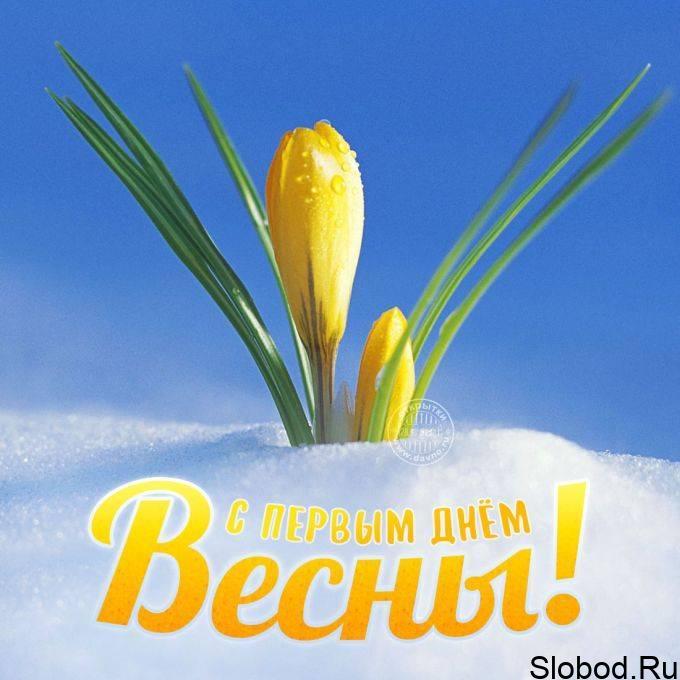 Поздравления с первым днем весны