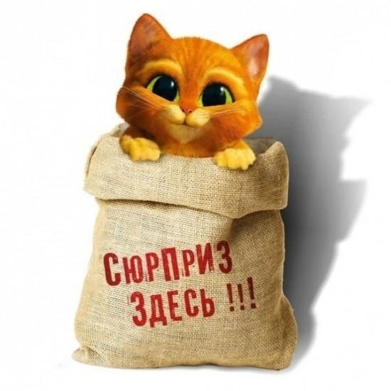 Открытка с объемным котиком