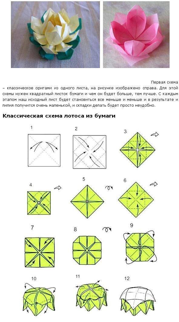 Оригами цветок: топ-140 фото идей. простая инструкция по созданию цветка из бумаги в технике оригами (мастер-класс + видео)