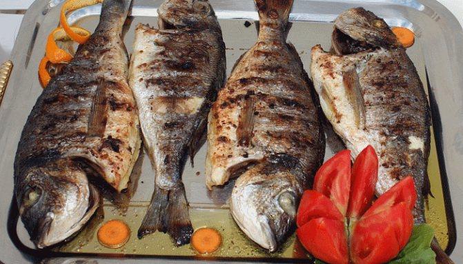 Сонник нарезанная рыба на тарелке. к чему снится нарезанная рыба на тарелке видеть во сне - сонник дома солнца