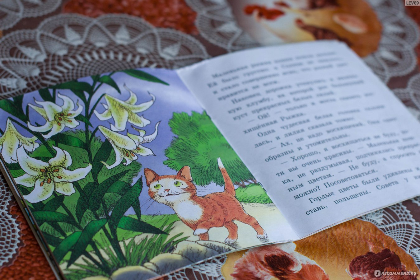 Детям про совушку - мудрую головушку | цветы жизни