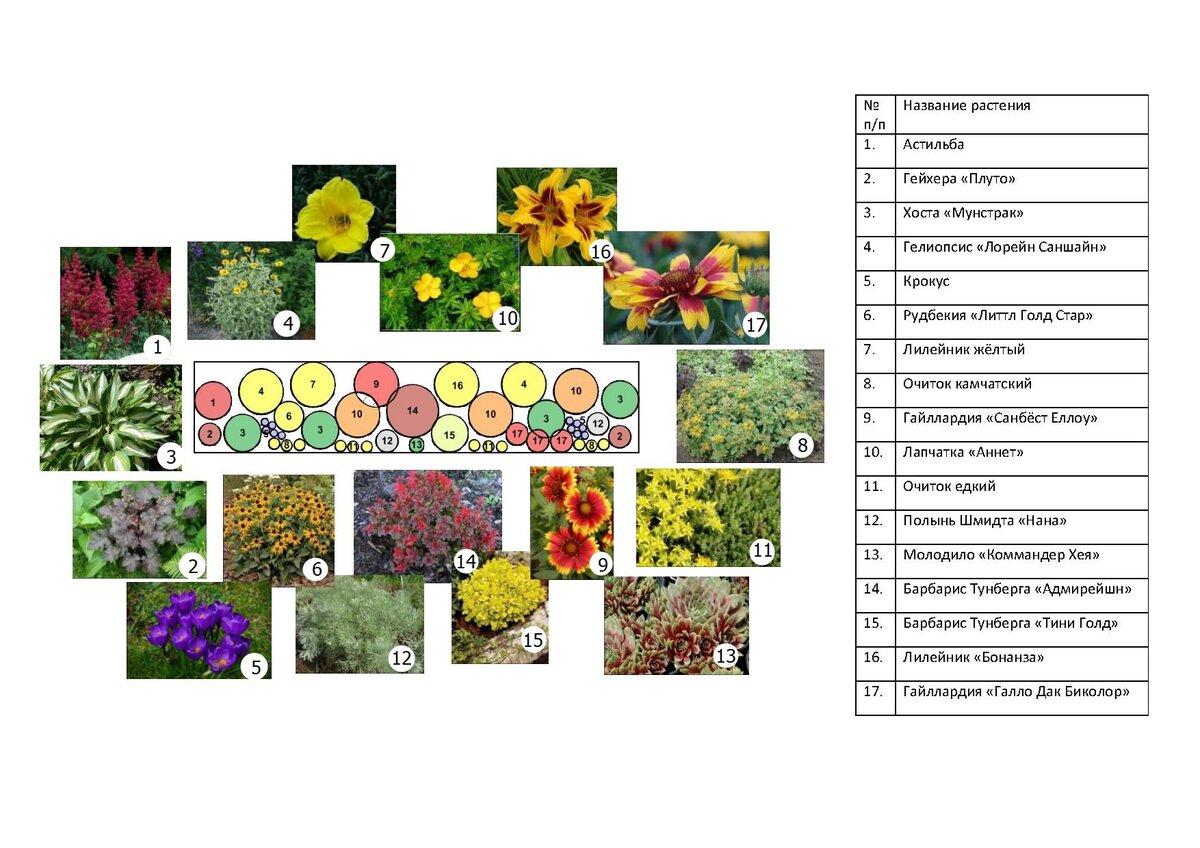 Клумбы своими руками: 125 фото и видео разведения цветов на участке и в саду