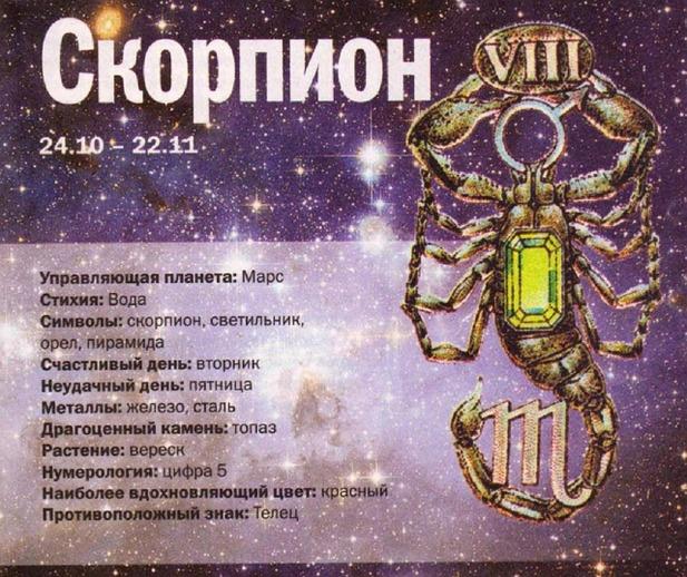 Знак зодиака скорпион (созвездие): что означает, как изображают, когда начинается этот период, с какого числа даты рождения, и все о нем — характеристика, описание