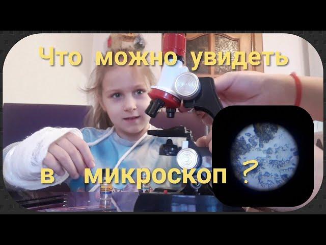 Как сделать микроскоп в домашних условиях. конструкция микроскопа как сделать микроскоп в домашних условиях. конструкция микроскопа