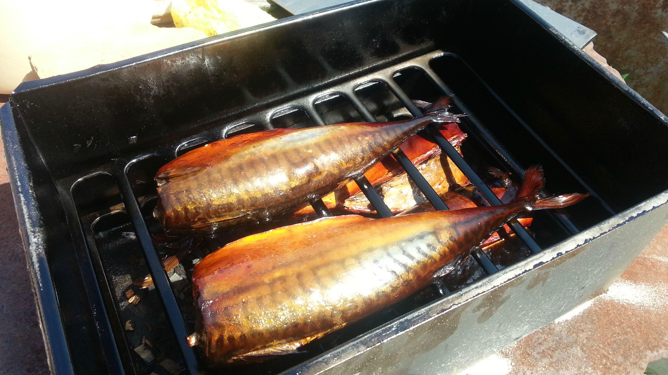 Как коптить рыбу в коптильне: способы правильно закоптить, рецепты копченой рыбы