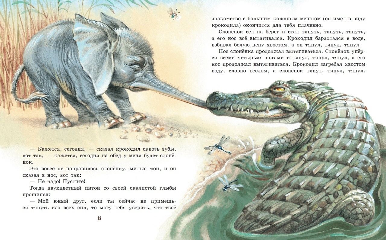 Слоненок - сказки киплинга: читать с картинками, иллюстрациями - сказка dy9.ru