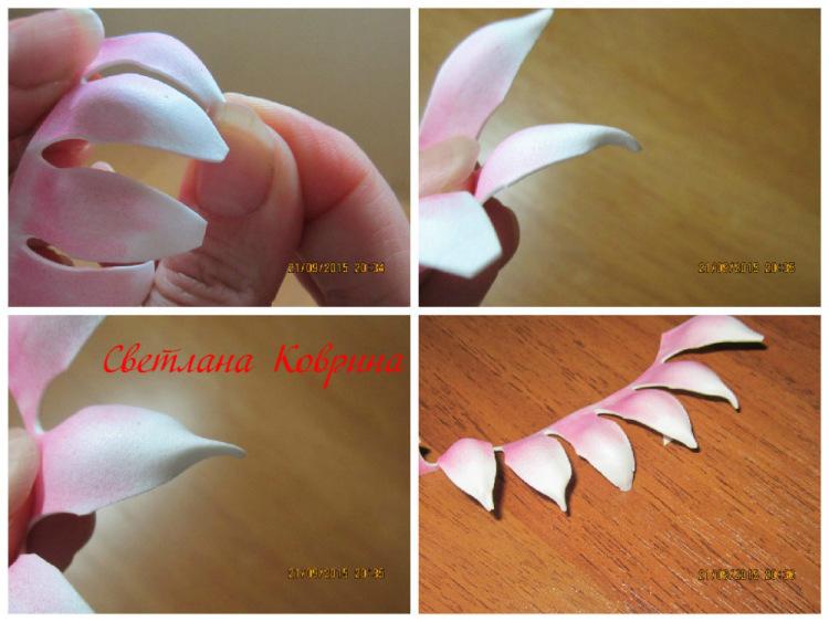 Георгин из фоамирана. георгин из фоамирана — мастер — класс по созданию красивого цветка шаровидный георгин из фома мк и шаблоны