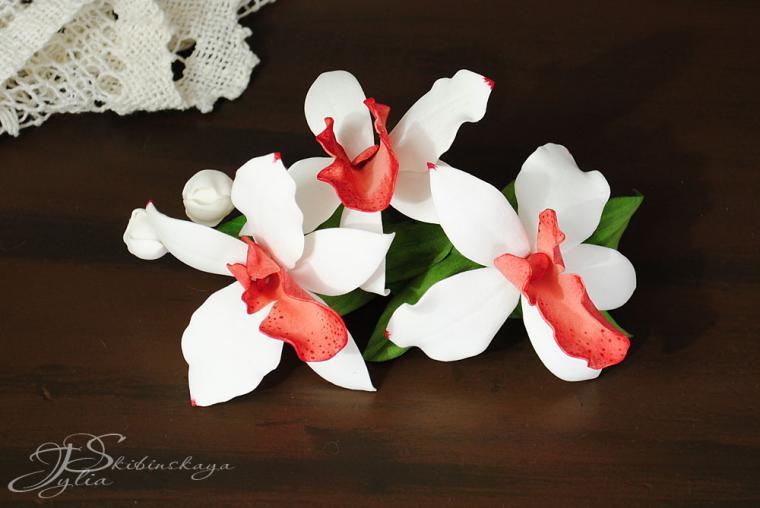Мастер-класс флористика искусственная лепка орхидея фаленопсис из холодного фарфора мастер- класс фарфор холодный