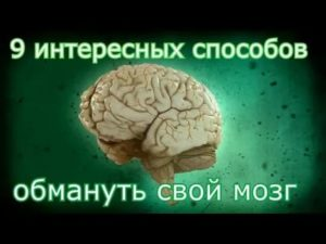 Опять напридумывал: какнас обманывает собственный мозг