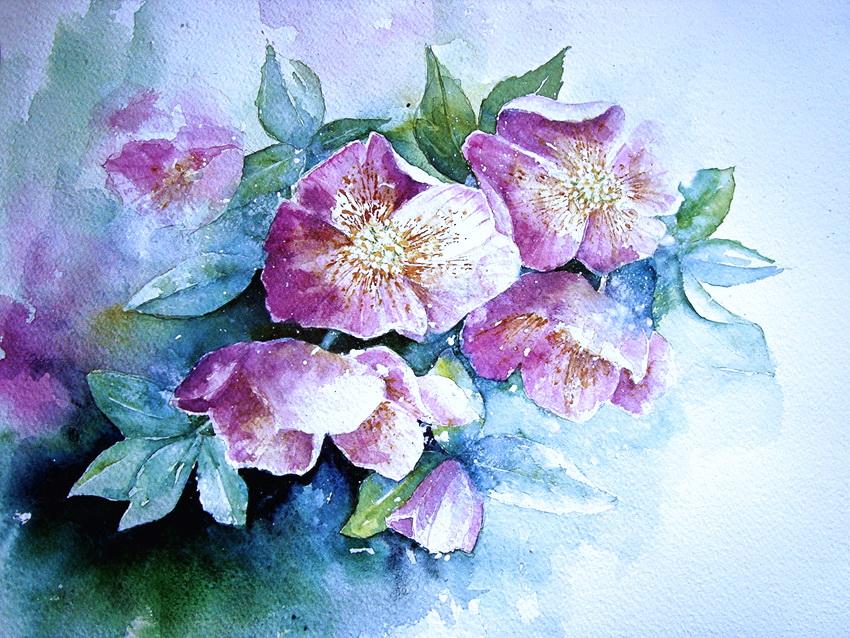 Как нарисовать цветы акварелью - пошаговый урок