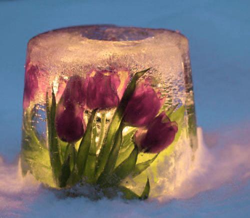 Как сделать ледяной подсвечник?